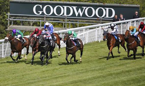 Image result for goodwood horse 2017